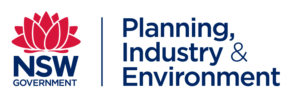 Department of Planning & Environment Logo